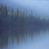 British Columbia Forest Reflection