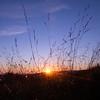 Sunset at Black Balsam