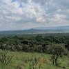 Kakamega Rain Forest