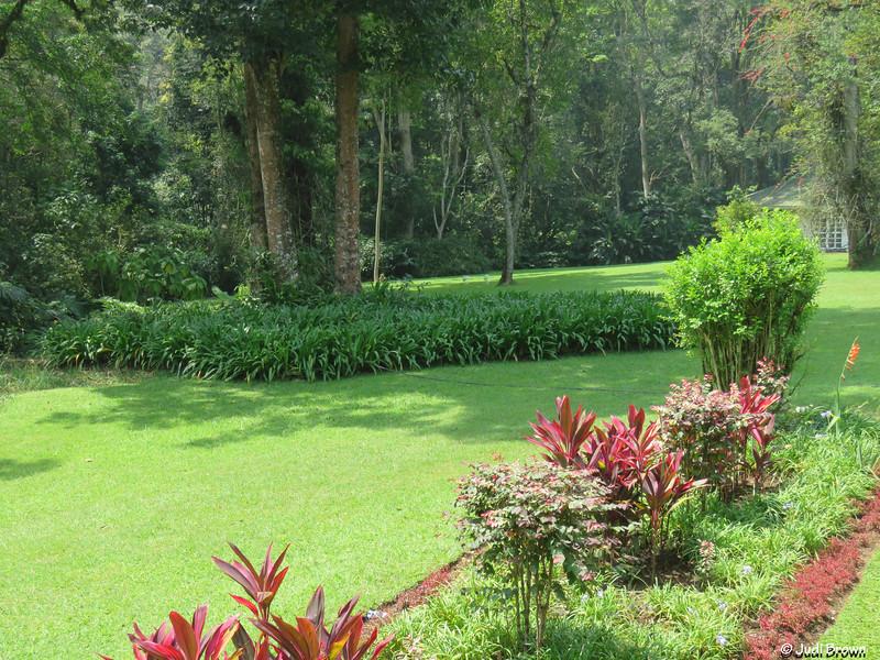Rondo Retreat Center in Kakamega Rainforest