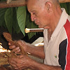 This farm is also an educational farm for People-to-People visits.  75 years old, this man has worked here for the past 40 years demonstrating how cigars are rolled.  He's missing the tip of his left index finger.  In his youth he worked in the govmt's processing factory where workers get paid by the cigar so they have to work fast - and many loose finger parts.