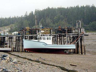 Quebec,New Brunswick, Nova Scotia, Bay of Fundy 2004