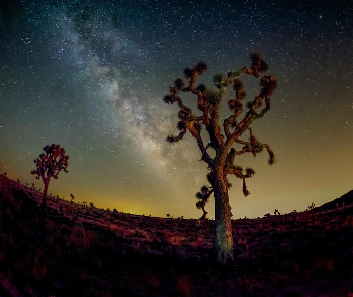 Dawn's Milky Way