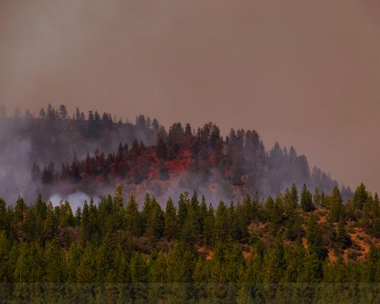 Retardant line on the Little Deer Fire, near US 97