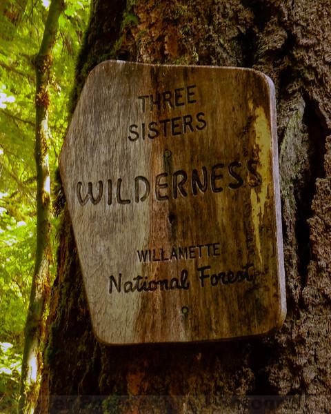 Entering Three Sisters Wilderness
