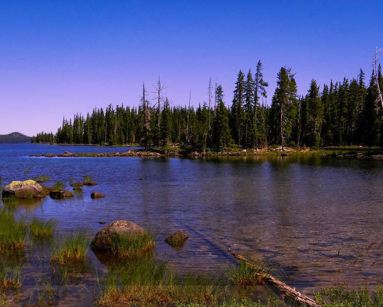 Looking north at Waldo Lake