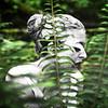 Sherri - Bridal Falls - Clay Profile