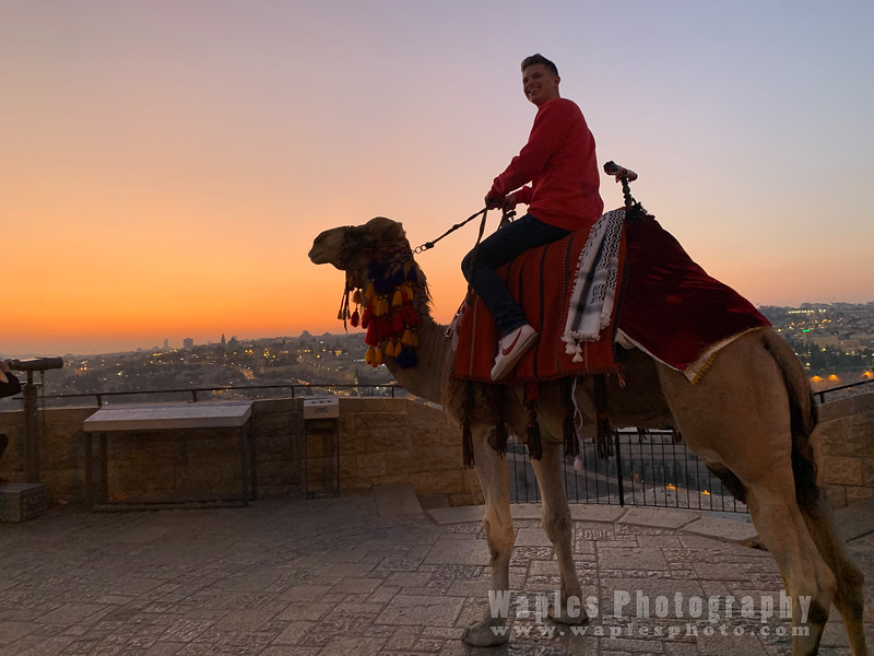 Joe on Camel