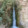 David Falls