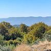 View from Tel Dan