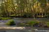 Antelope Creek