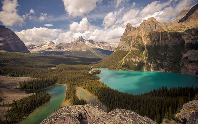 Lake O'Hara Views