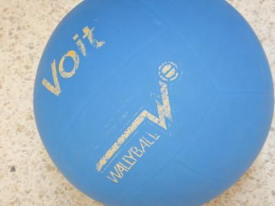 Wallyball