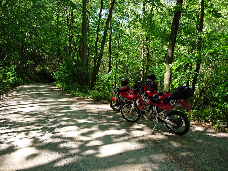 Forest Route 140 off of 215