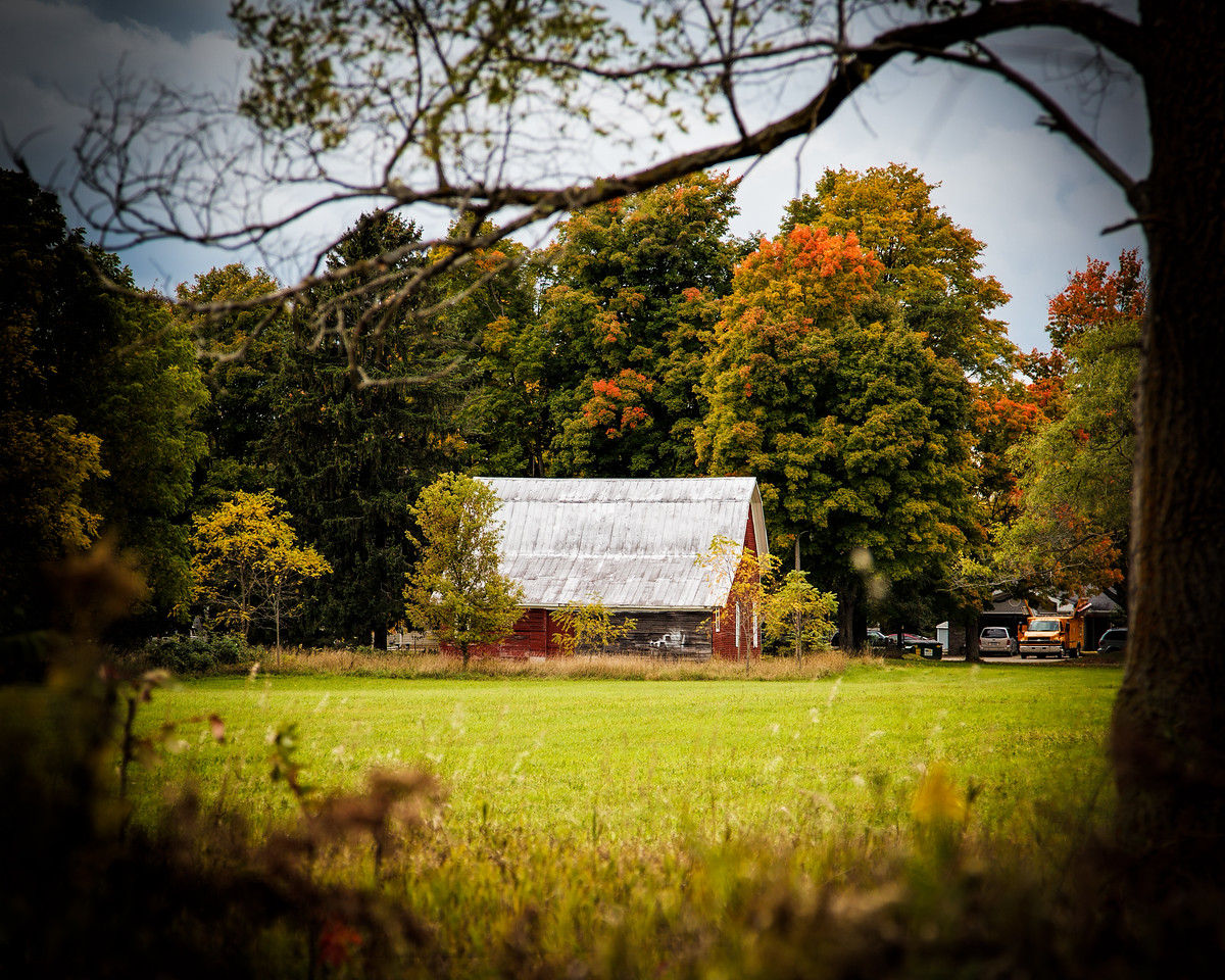 The barn in the trees