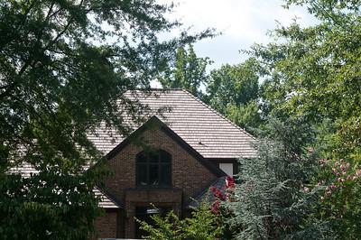 Alternate Roofs