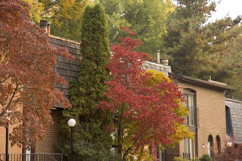 Inverness Village in the Fall