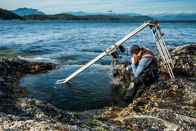 Using a specialist motion control rig to film underwater timelapse in a rockpool for BBC Blue Planet II, Vancouver island, British Columbia