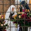Investiture for Sister Maria Sagrario of the Pierced Heart of Jesus at Carmelite Monastery