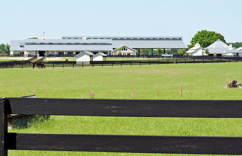 View of the main barn across one of the turn out pastures.