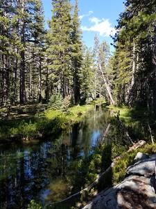 Quiet Stretch of Minaret Creek
