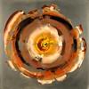 Copper metal-Iorillo, 24x24