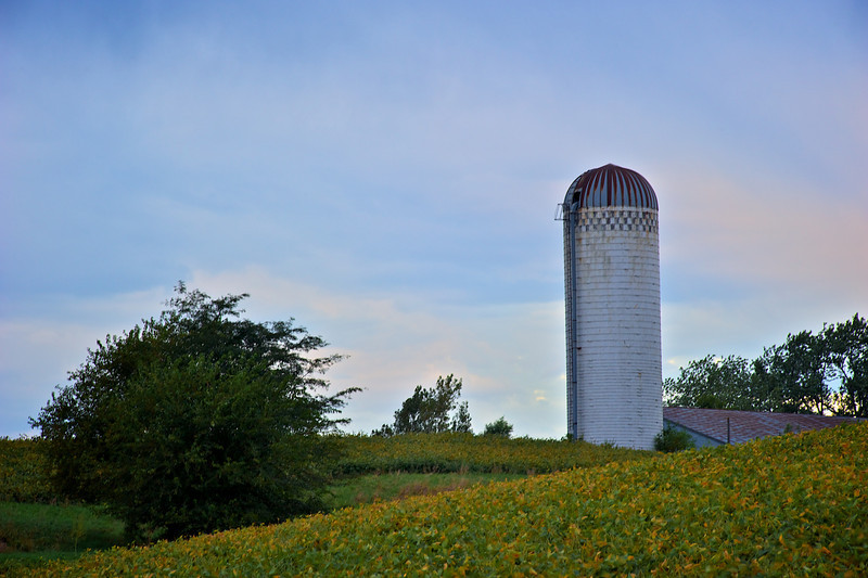 Silo watching over field