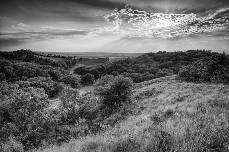 Loes Hills