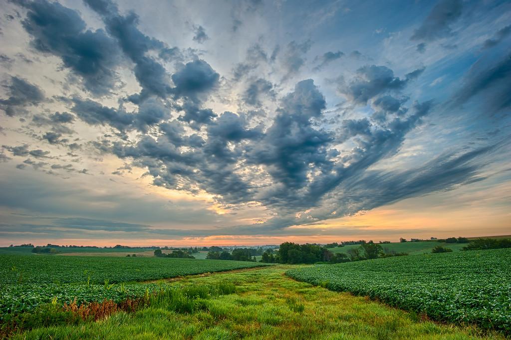 Sunrise clouds over Iowa row crop