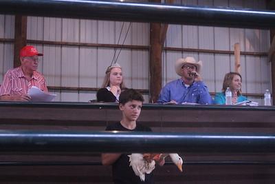 Iowa County Fair Auction 9-1-18