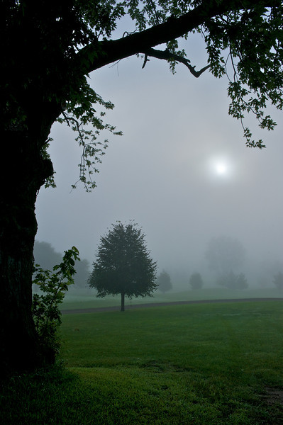 Sun peaking through fog