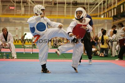 Taekwondo_03