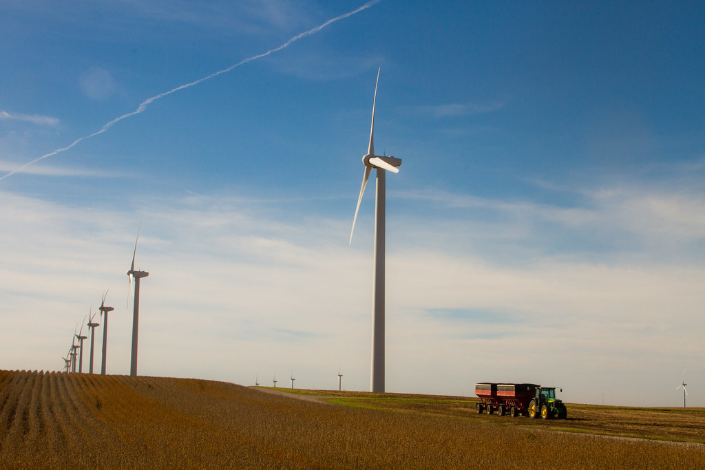 Harvesting Among the Wind Turbines in Hamilton County, Iowa