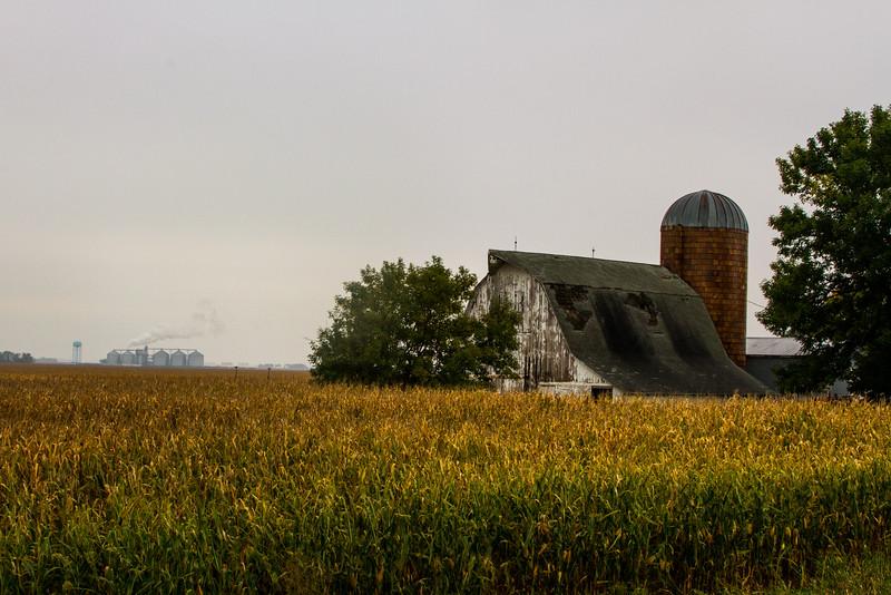 Farm North of Jewell in Hamilton County