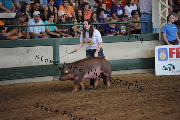 Elizabeth Jones, of the Williamsburg FFA chapter, won Champion Purebred Registered Breeding Gilt in the FFA Parade of Champions at the Iowa State Fair on Aug. 10. (Iowa State Fair/ Steve Pope Photography)