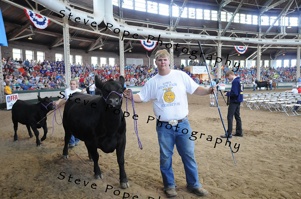 The Supreme Cow/Calf and Champion Angus Cow/Calf was entered by Kale Kiesewtter, of the Louisa-Muscatine FFA chapter at Letts, in the FFA Parade of Champions at the Iowa State Fair on Aug. 10. (Iowa State Fair/ Steve Pope Photography)