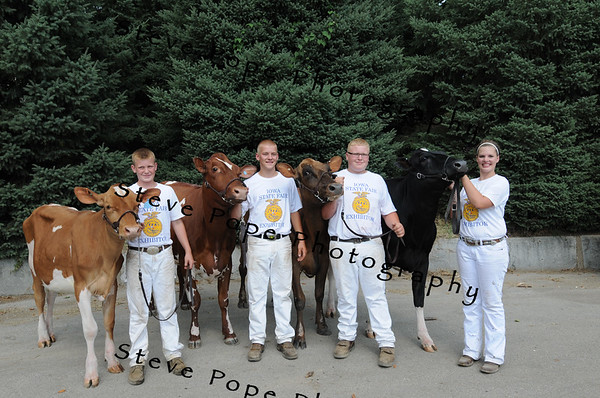 Cole Kruse, Ryan Goedken, Kaleb Kruse, and Madi Gibbs, of the Maquoketa Valley FFA in New Delhi, pose with their cattle after the FFA Parade of Champions at the Iowa State Fair on Aug. 10. (Iowa State Fair/ Steve Pope Photography)