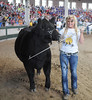 Champion Maintainer Heifer was exhibited by Ashley Kress, from the Guthrie Center FFA chapter, in the FFA Parade of Champions at the Iowa State Fair on Aug. 10. (Iowa State Fair/ Steve Pope Photography)