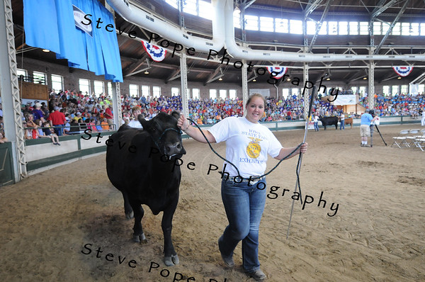 Reserve Champion Commercial Cow/Calf went to Rachel Maloy, Agri-Power, FFA chapter at Eddyville, in the FFA Parade of Champions at the Iowa State Fair on Aug. 10. (Iowa State Fair/ Steve Pope Photography)
