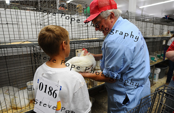 Bart Pals, of Mason City, judges poultry at the Iowa State Fair on Aug. 8. (Iowa State Fair/ Steve Pope Photography)