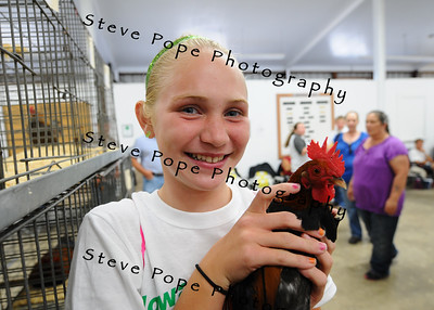Kami Tibben, 11, of Stanton, holds her rooster at the Iowa State Fain on Aug. 8. (Iowa State Fair/ Steve Pope Photography)