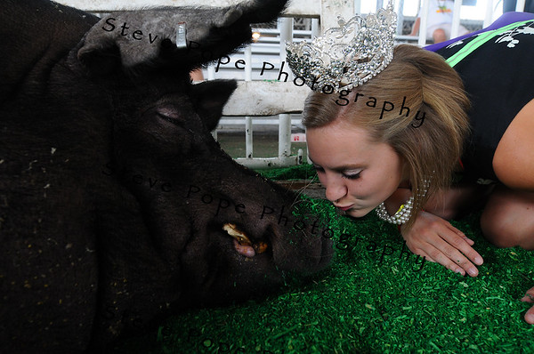 2012 Iowa State Fair Queen Abrah Meyer, of Readlyn, kisses the winning Big Boar at the Iowa State Fair on Aug. 8. (Iowa State Fair/ Steve Pope Photography)
