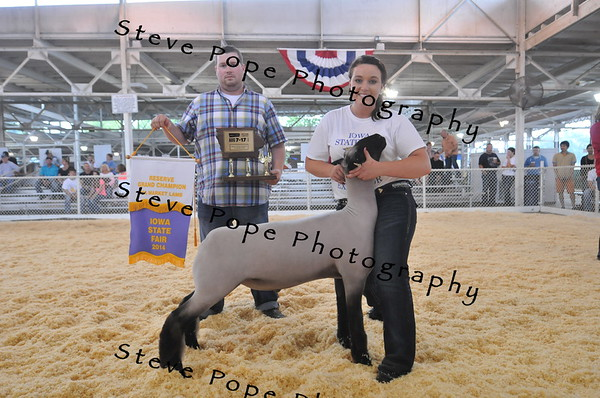 Chelsey Nelson, 21, of Elk Horn, shows her FFA Reserve Grand Champion Market Lamb at the Iowa State Fair on Aug. 7 while Nick Enfield displays her banner and trophy. (Iowa State Fair/ Steve Pope Photography)