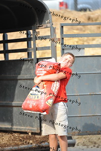 Eleven year old Blake Juhl, of Hedrick, carries feed at the Iowa State Fair on Aug. 16. (Iowa State Fair/ Steve Pope Photography)