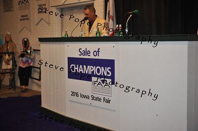 2016 Sale of Champions