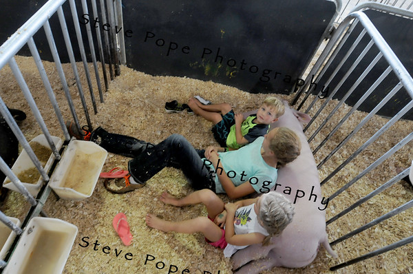 Lawton Pitzen, Lydia Stauit, and Chloe Pitzen, of Adel, Charles City, and Elk Horn, sit with a hog at the Iowa State Fair on Aug. 20. (Iowa State Fair/ Steve Pope Photography)