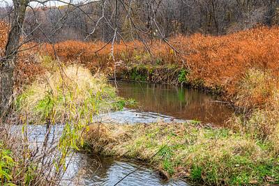 2019 Mink Creek