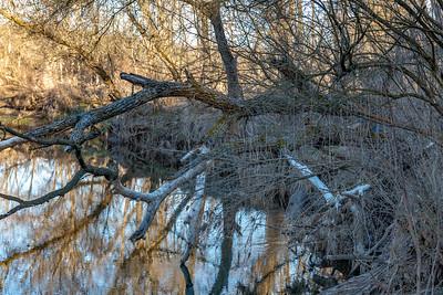2019 Sny Magill Creek