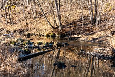 Backbone State Park 2020-12-05