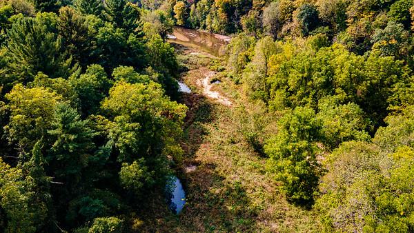 Backbone State Park - Overlook